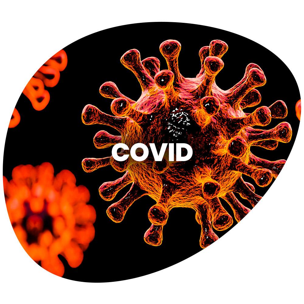 COVID 2021 2