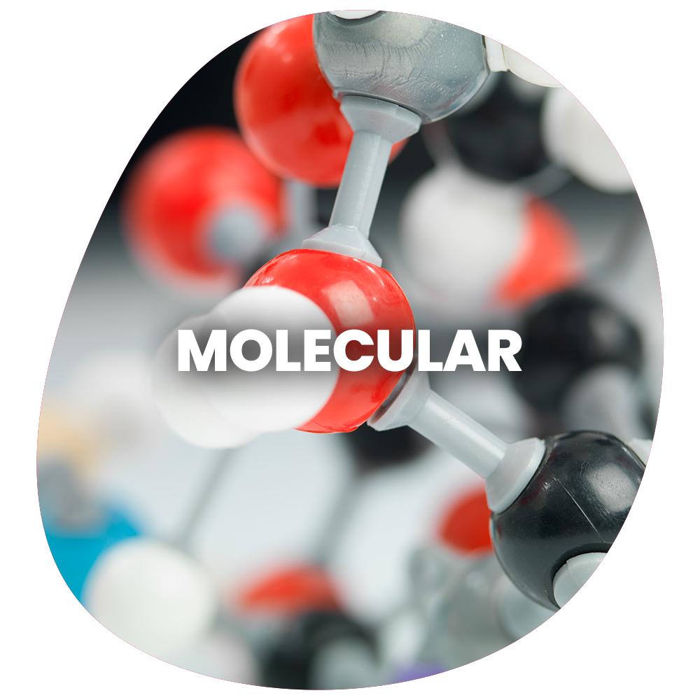 Moleculer 2021 2
